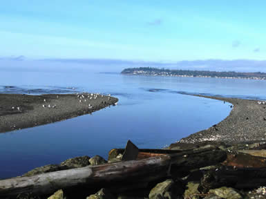 Mouth of Terrell Creek Entering Birch Bay