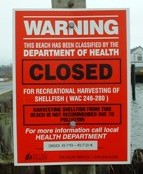 Shellfish Closure