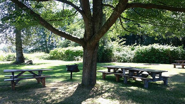 Hovander Red Picnic Area Header
