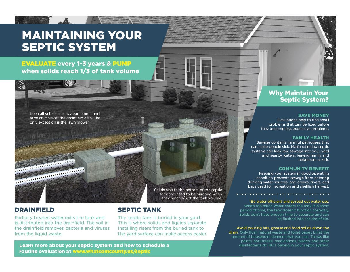 Septic Infographic