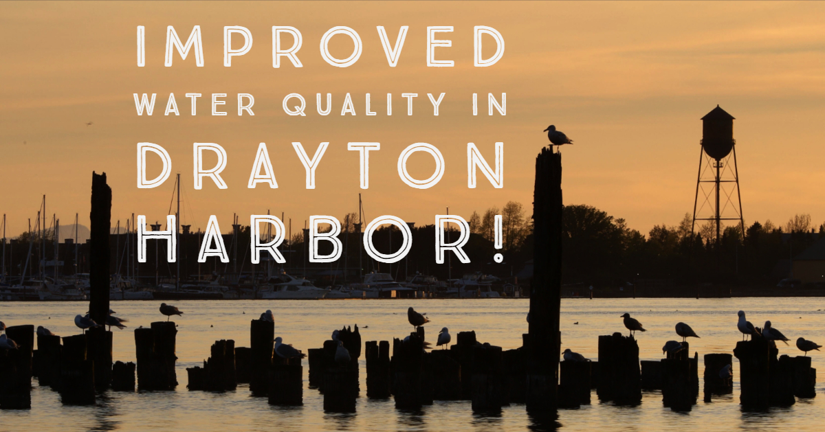 Drayton Harbor FB