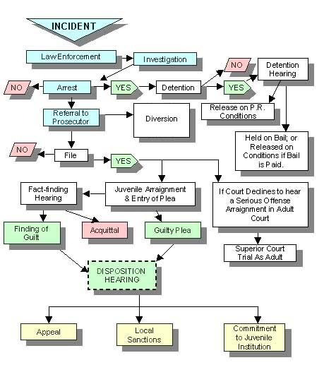Juvenile Justice System Flow Chart From Incident to Appeal