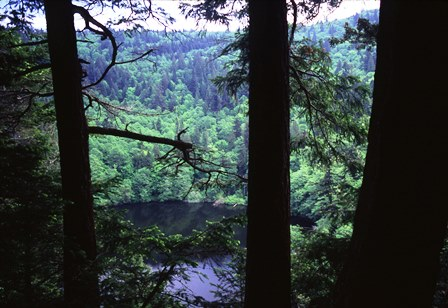 Chuckanut Mountain Park - Fragrance Lake